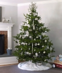 silver-christmas-tree-ictcrop_gal